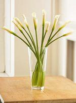 Virginia Berdan Good Karma Home Staging & Design